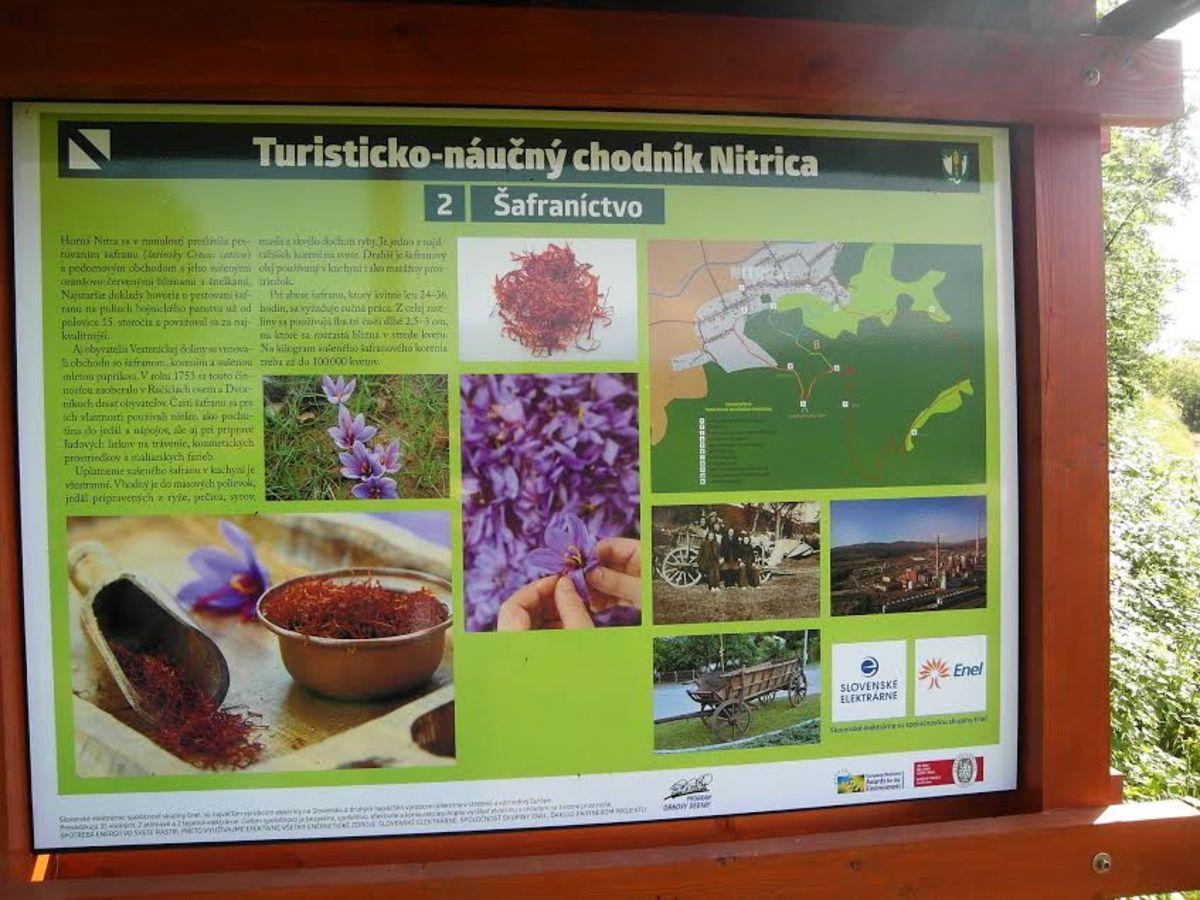 f179904f1 Turistická destinácia Región Horná Nitra – Bojnice pripomína ľudového  liečiteľa Fraňa Madvu - Slovakia.travel